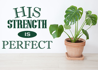His Strength Is Perfect Vinyl Wall Statement